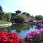 Южная Корея продлила сроки безвизового пребывания в стране для транзитных туристов