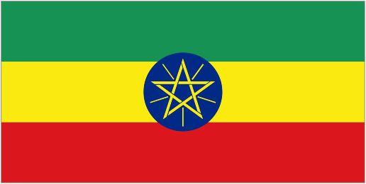 В центре флага почетное место занимает герб Эфиопии