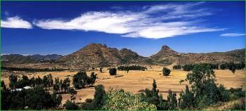 Эфиопская дикая природа - безопасность туристов фото