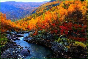 Норвегия - фото природы - осенняя горная река