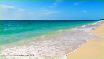 пляж около Орландо в феврале - фото