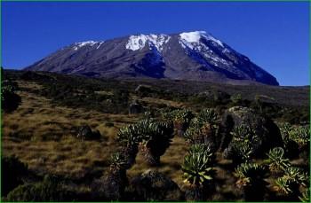 Килиманджаро в феврале - Танзания фото