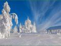Тур по Золотому Кольцу России в январе фото