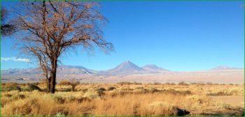 Отдых с детьми в Сан-Педро-де-Атакама в Чили март фото