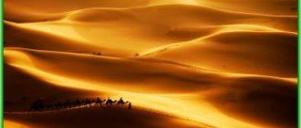 Алжир - Сахара