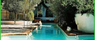 Дом-музей Дали открыл для гостей оливковую рощу