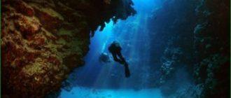 Поездка на дайвинг в Красном море в декабре