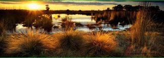 Парк Великое Лимпопо - Африка