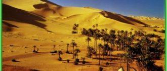 Особенности Алжира