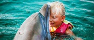 Отдых в Крыму с детьми в августе
