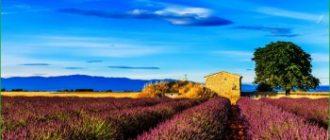 Путешествие в Прованс в сентябре
