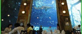Рестораны ЮАР