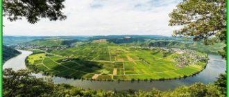Мозельский Винный маршрут в Германии вновь открывается
