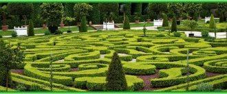 Открывается самый большой зелёный лабиринт в мире