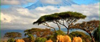Танзания - путешествие в феврале по Восточной Африке