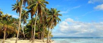 Путешествие по Ямайке в январе